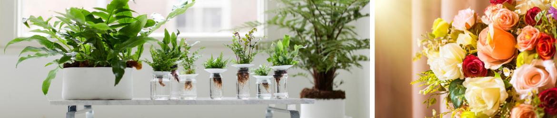 GroenRijk-DenBosch-kunstbloemen-kunstplanten-tuincentrum