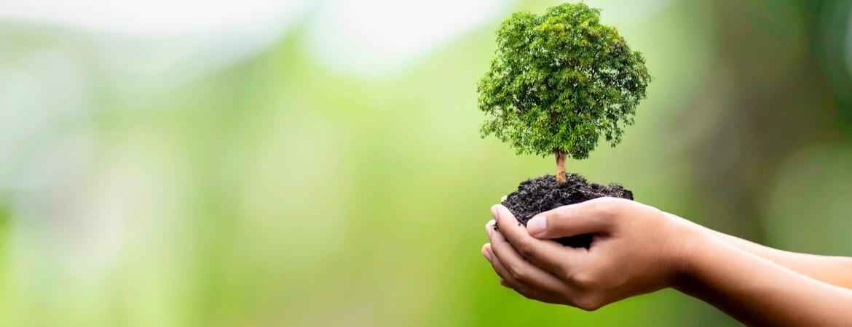 groenrijk: duurzaamheidsbeleid