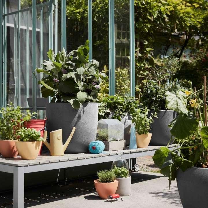 Bloempotten en plantenbakken kopen | GroenRijk Den Bosch