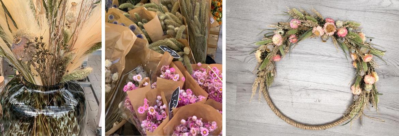 Droogbloemen, grassen en pluimen kopen | GroenRijk Den Bosch