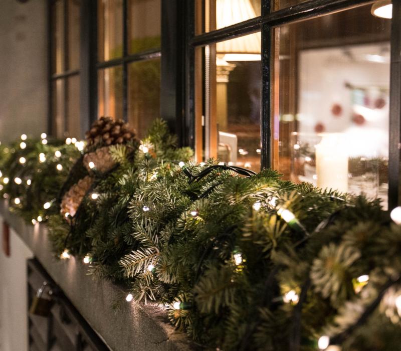 Kerstverlichting kopen   GroenRijk Den Bosch