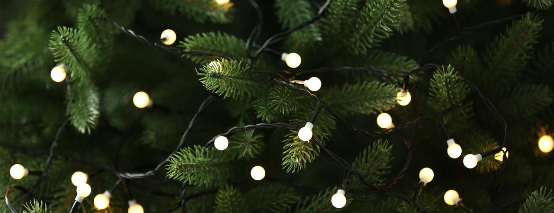 Kerstverlichting kopen | GroenRijk Den Bosch