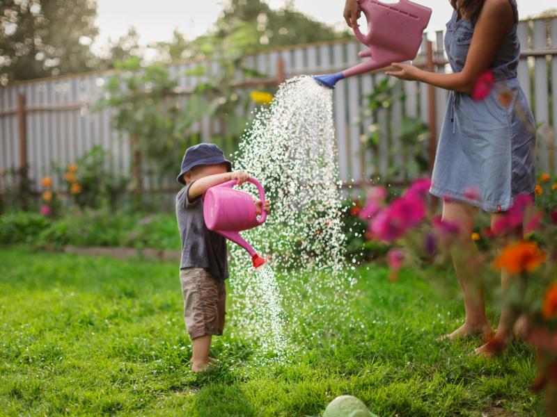 Lenteklaar maken van de tuin | GroenRijk Den Bosch
