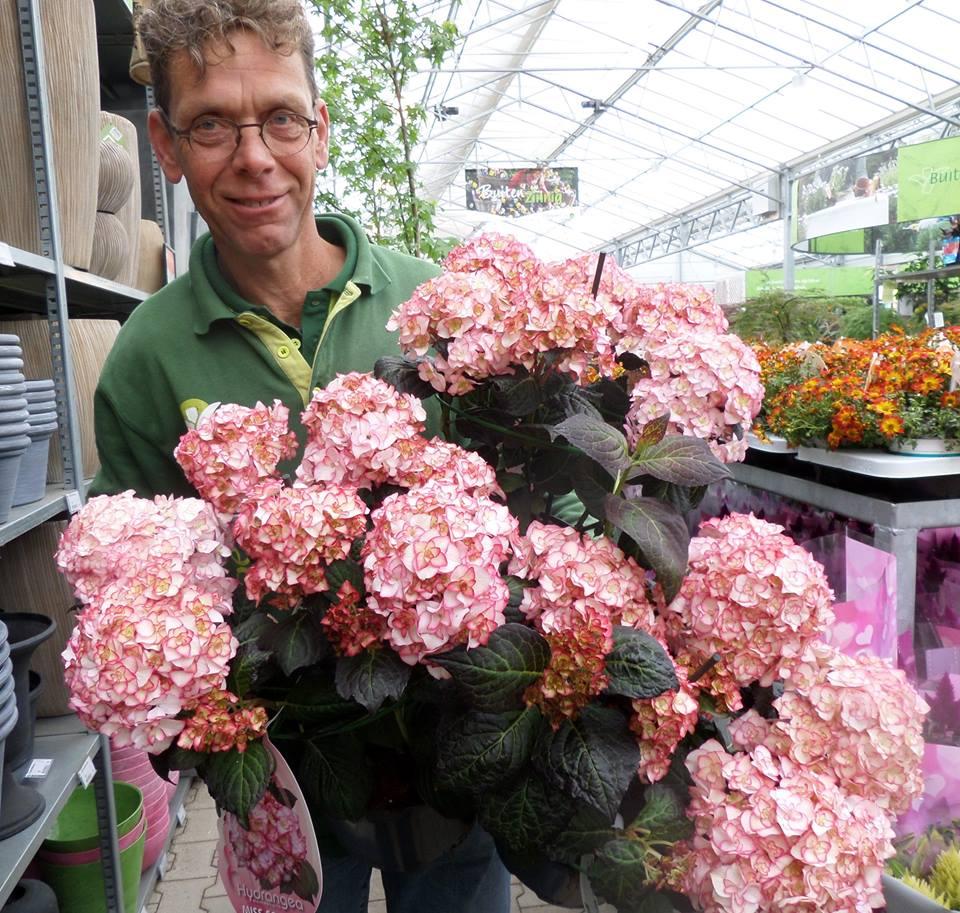 De mooiste tuinplanten koopt u bij GroenRijk nabij Schijndel!