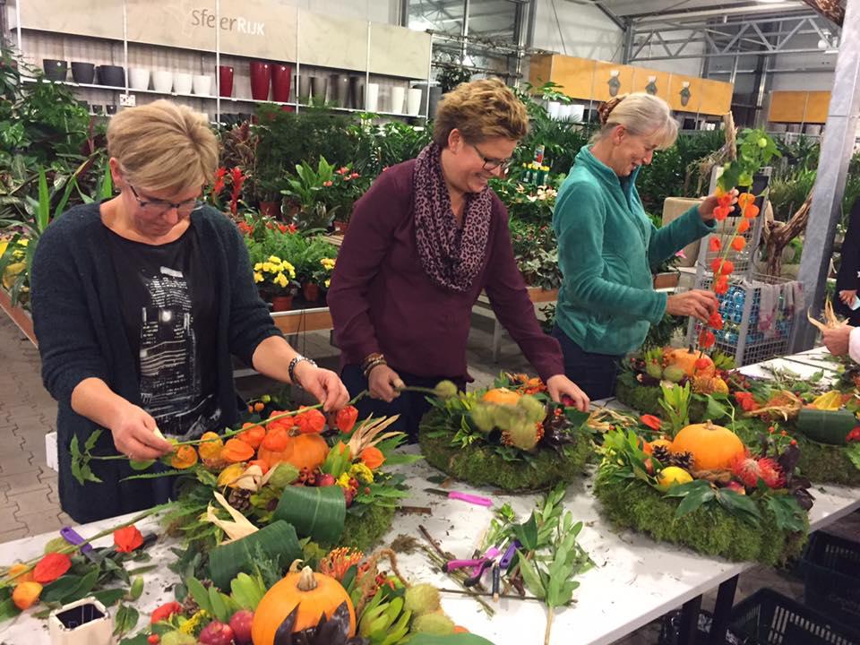 Bezoek ons gezellige tuincentrum nabij Drunen!